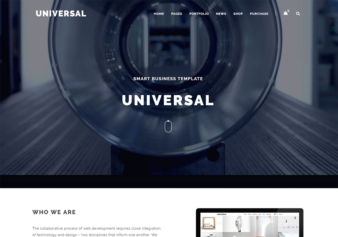 Universal WordPress themes video background
