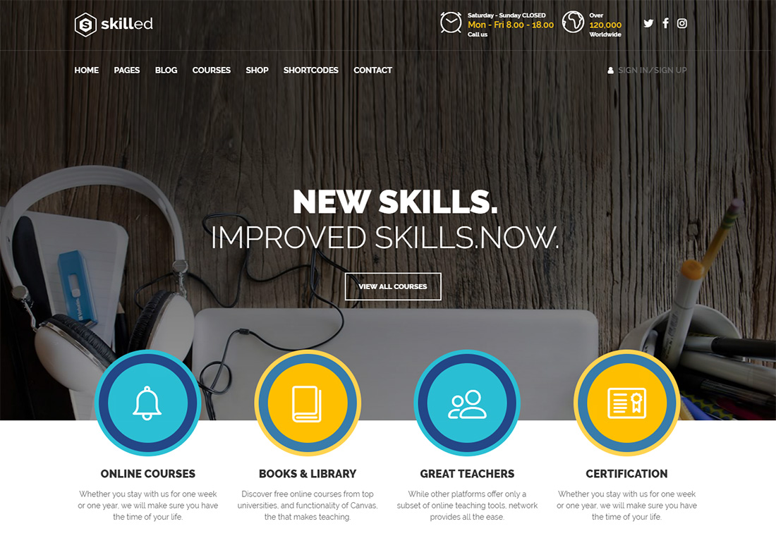 Skilled online course WordPress theme