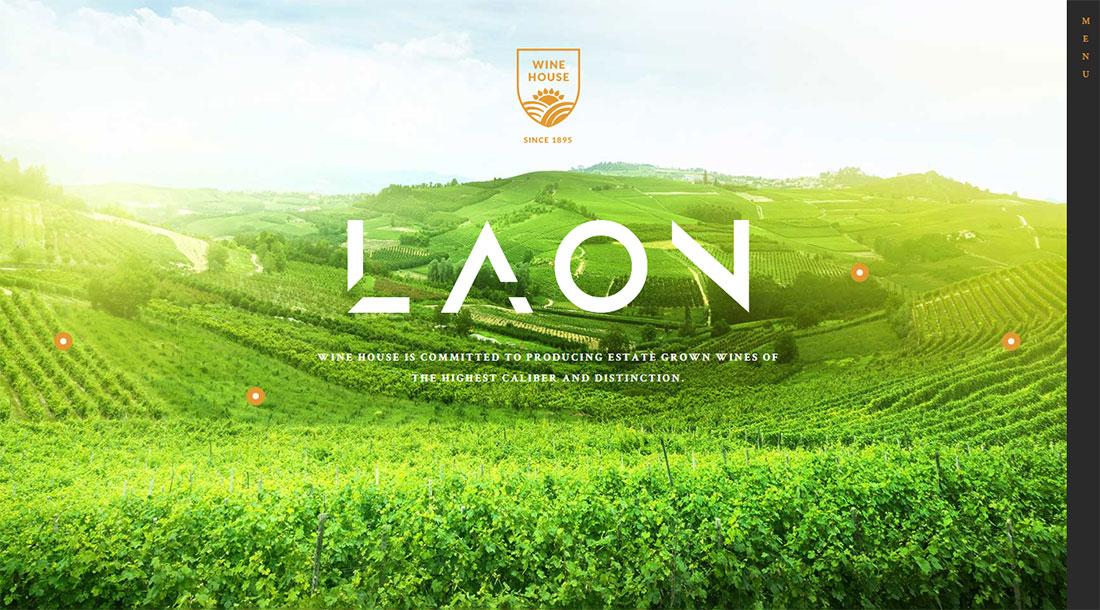 laon shop WordPress theme