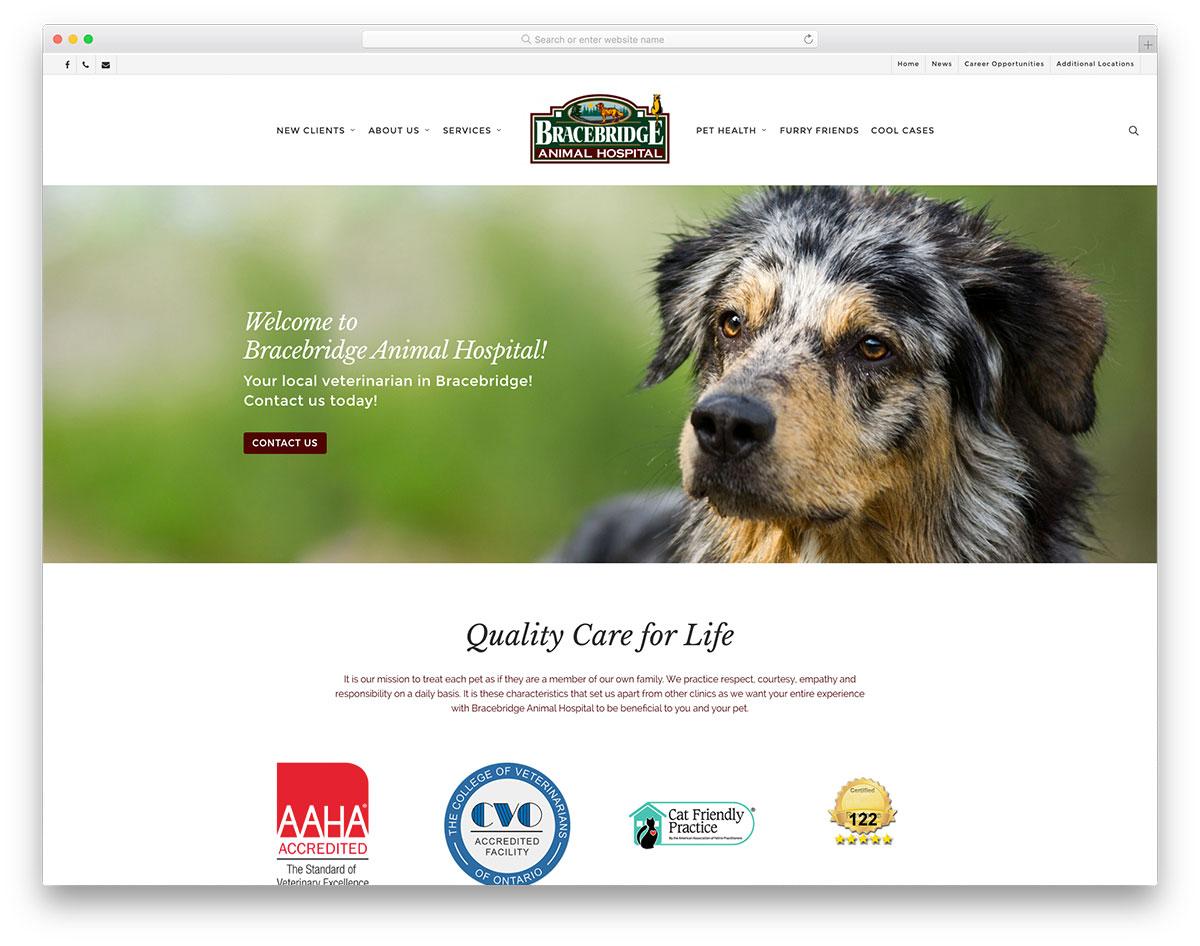 Brace Bridge Animal Hospital