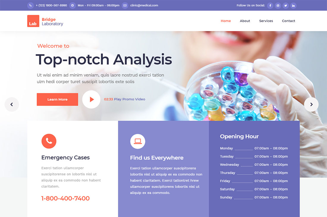 bridge science wordpress theme
