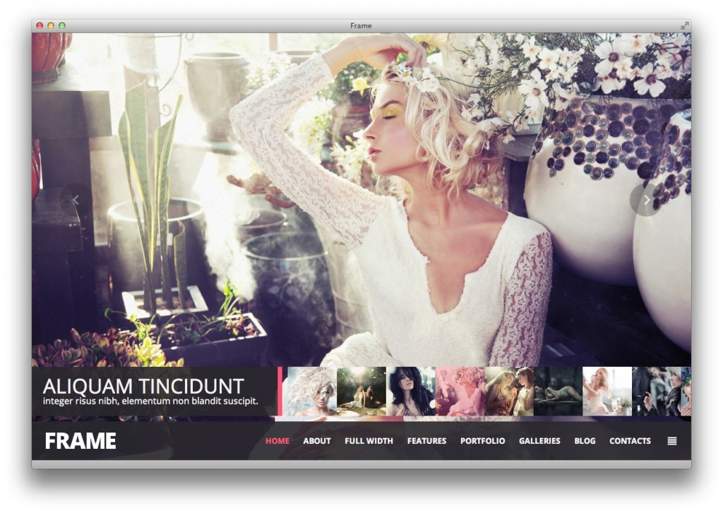Frame Photography theme