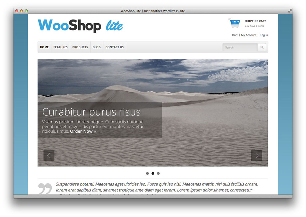 WooShop lite WordPress theme