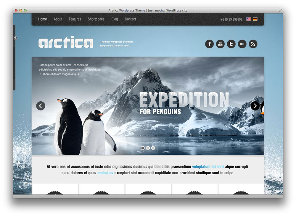Arctica Responsive WordPress Theme