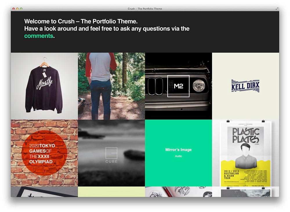 the portfolio theme