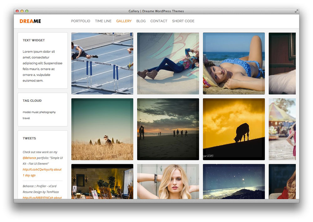 dreame wordpress theme