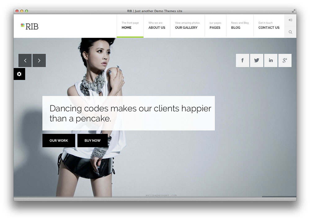 rib responsive WordPress theme