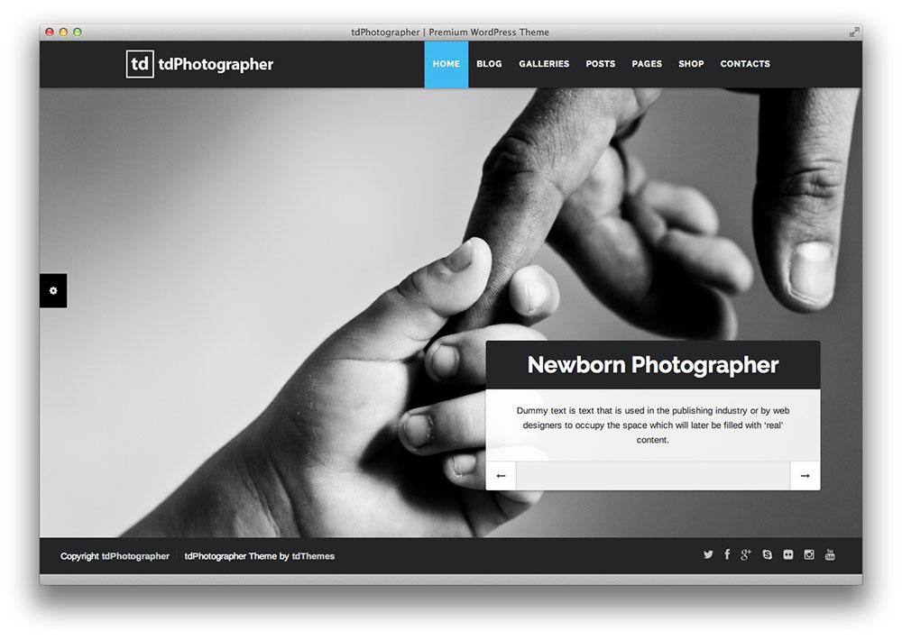 tdPhotographer WordPress theme