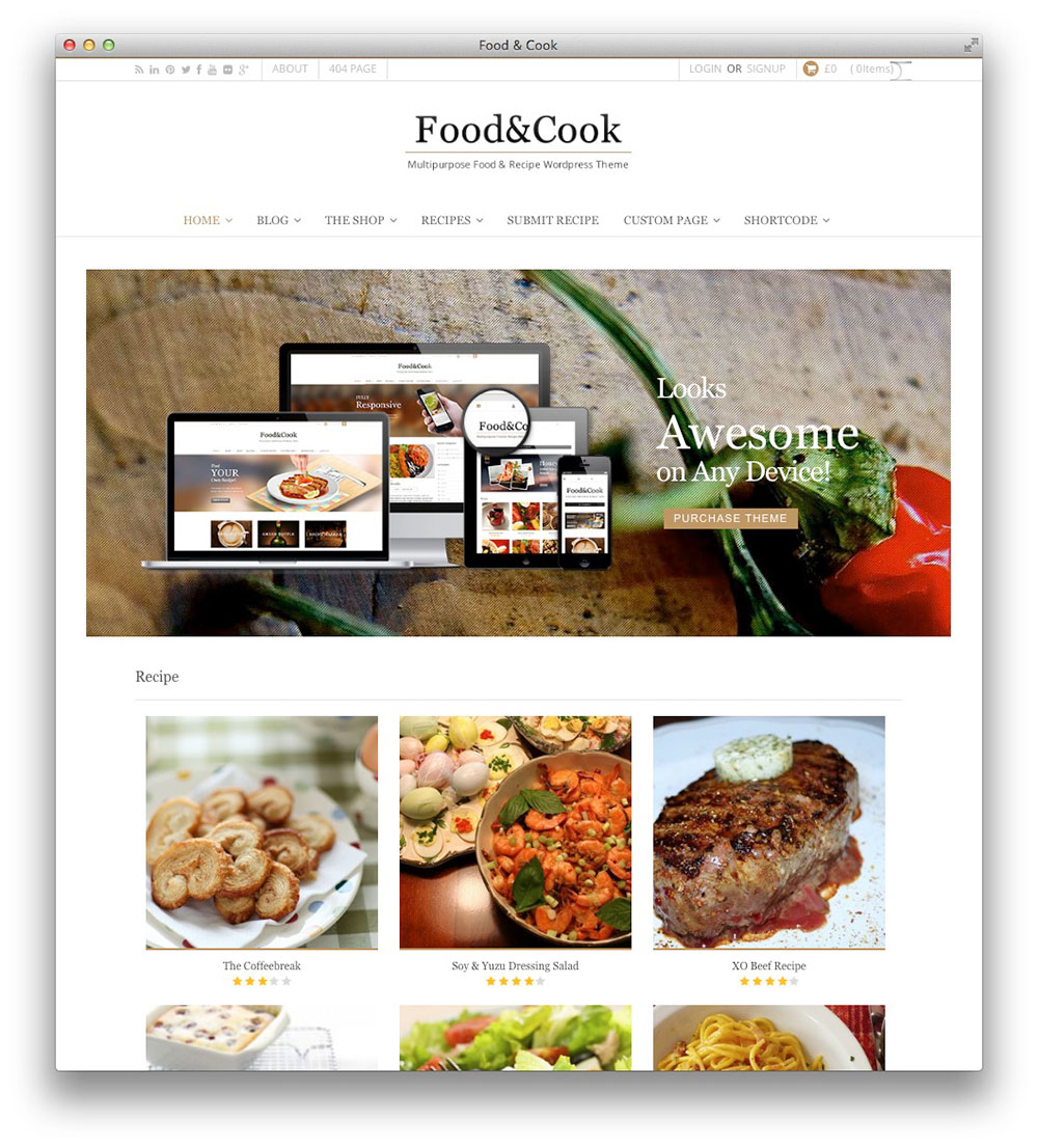 Food & Cook Recipe WP Theme