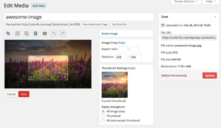 Wordpress Thumbnails