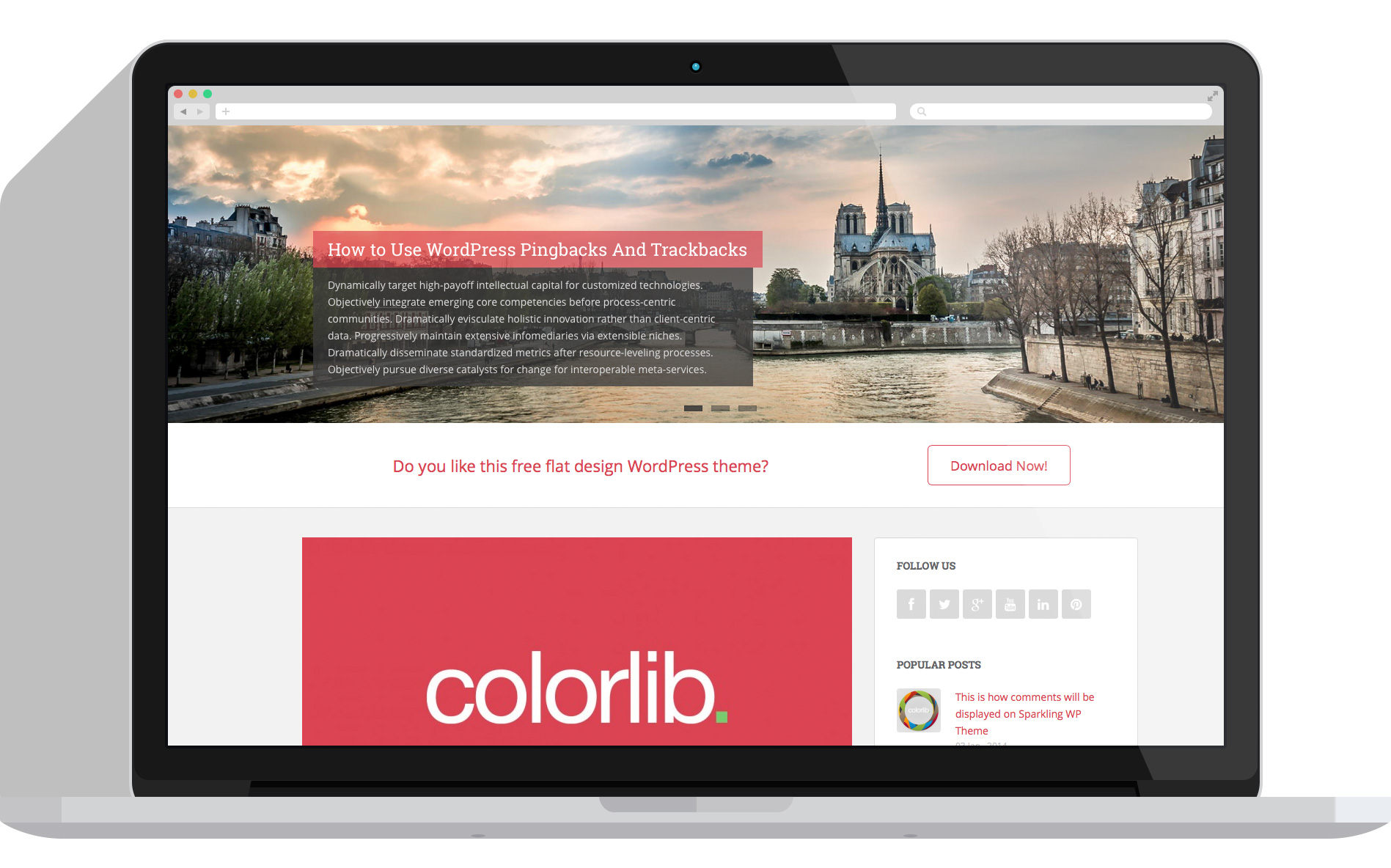Sparkling Free Flat Design WordPress Theme Colorlib