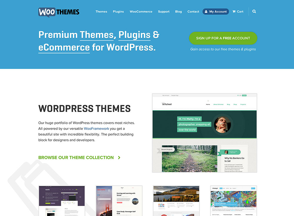 WooThemes Coupon