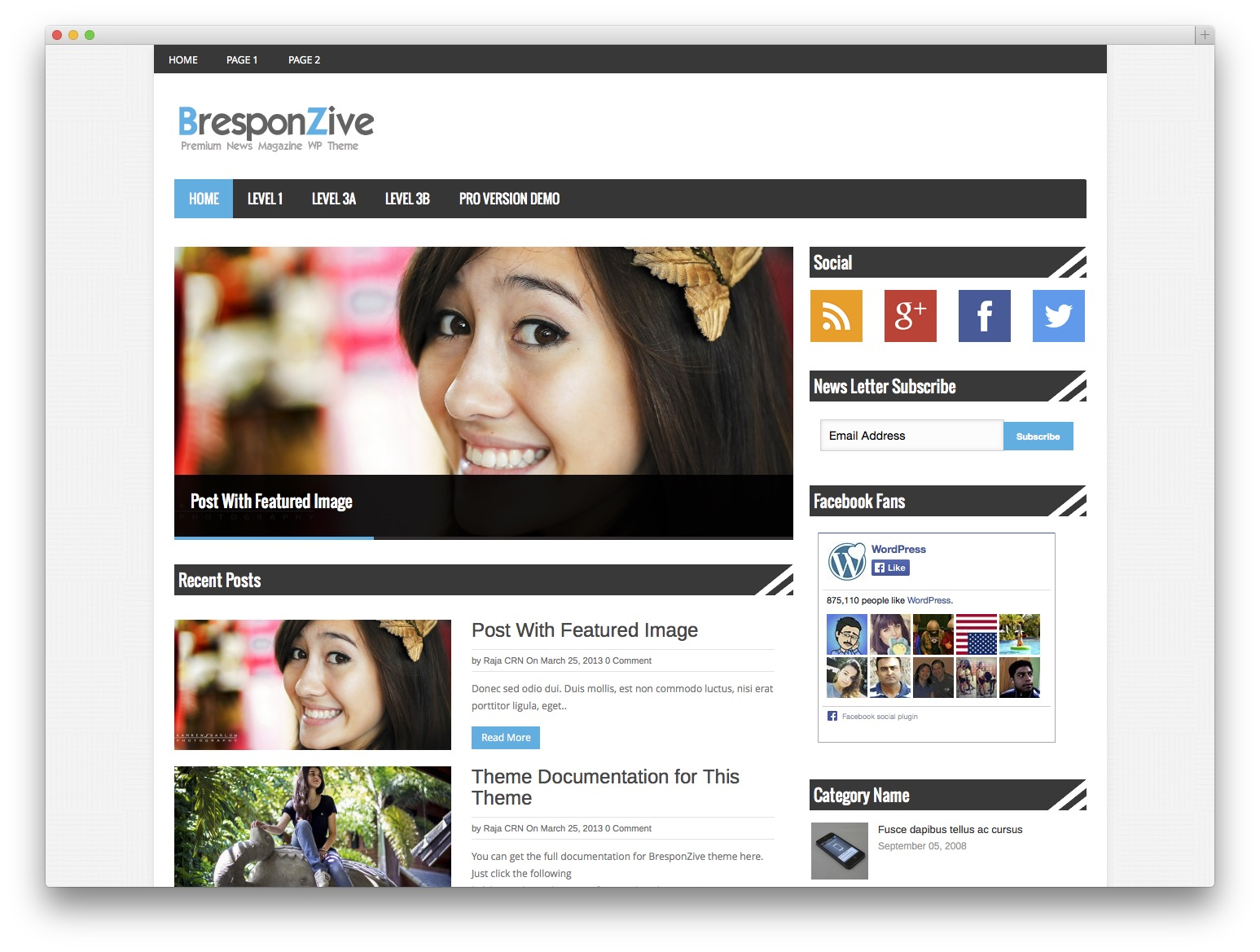 bresponzive WordPress template