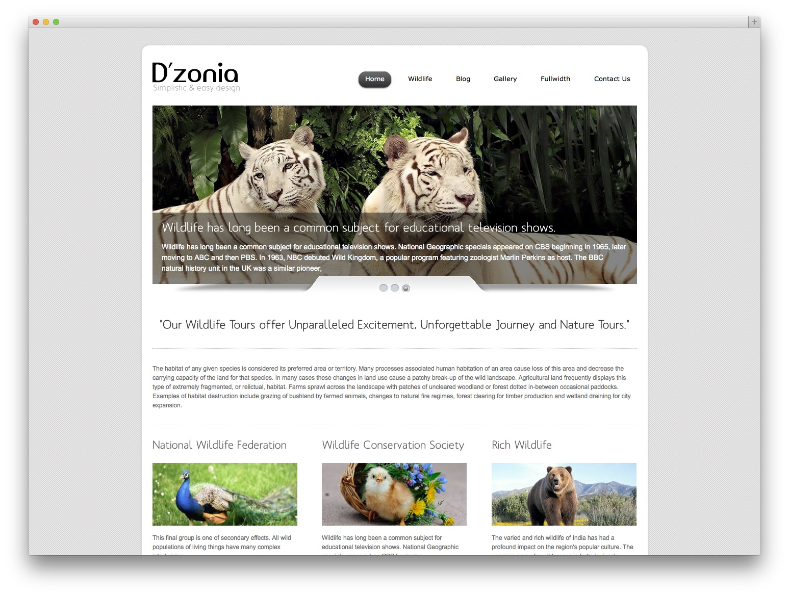 dzonia WordPress template