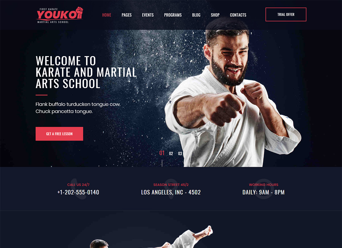 Youku Martial Arts WordPress Theme