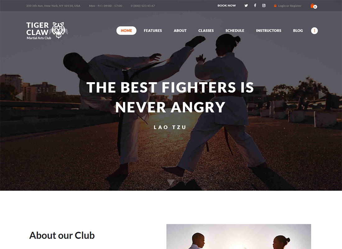 Tiger Claw Martial Arts WordPress Theme
