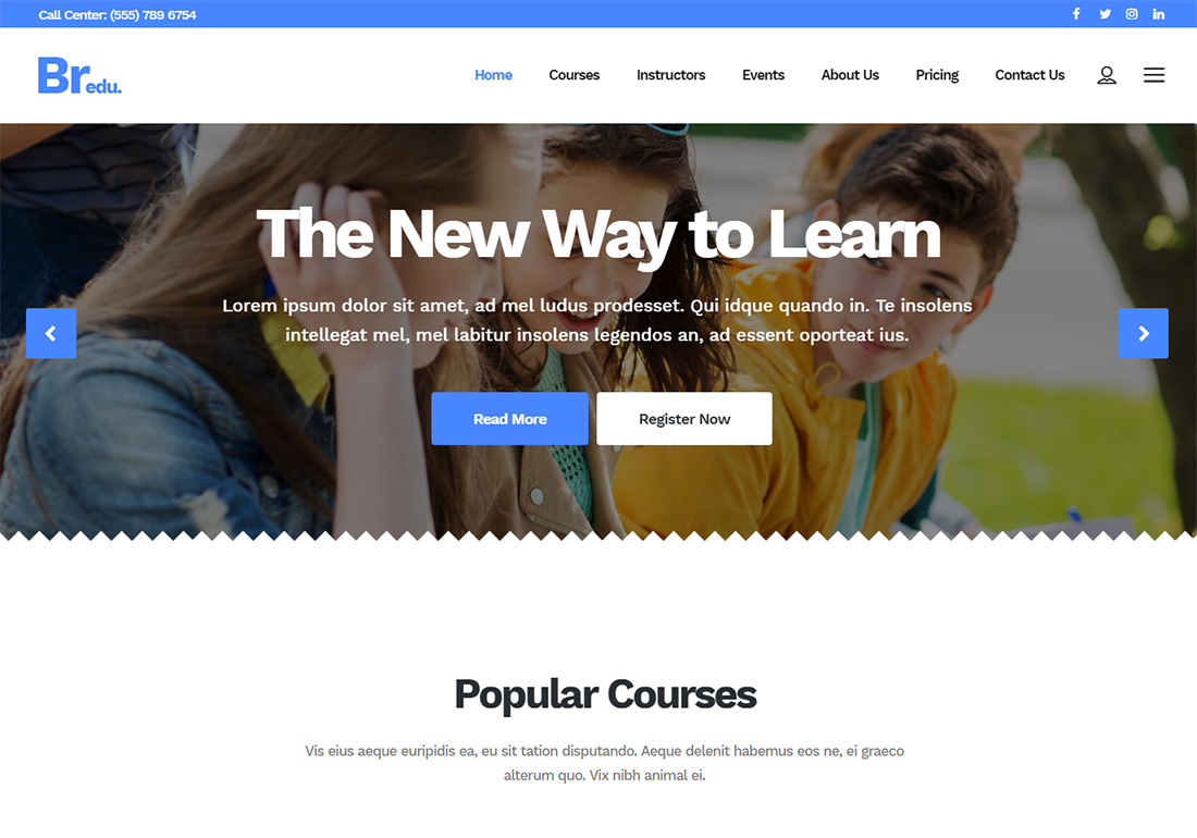 Bridge online course WordPress theme