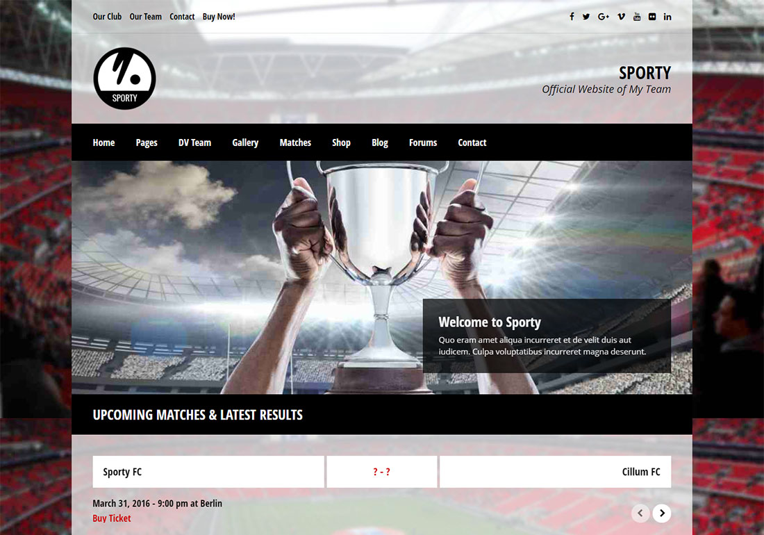 Sporty baseball WordPress theme