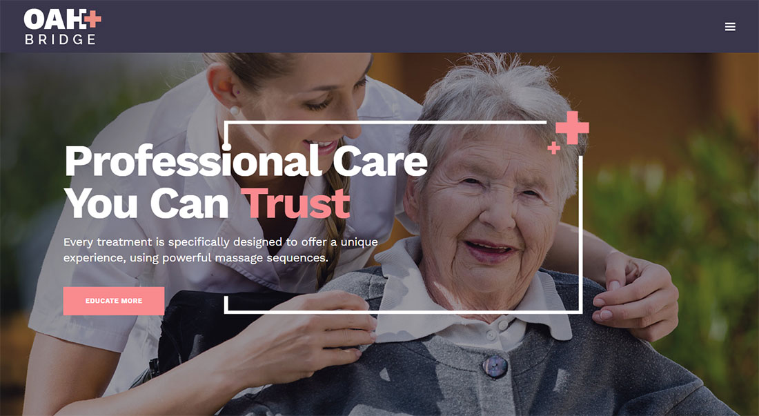 bridge elderly care wordpress themes