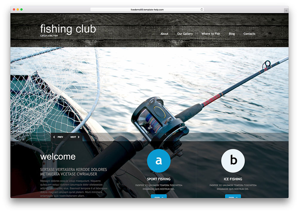 Top 10 Professional WordPress Fishing Themes 2015 - Colorlib