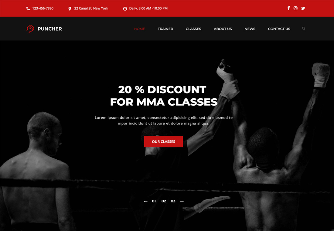 Puncher Martial Arts WordPress Theme