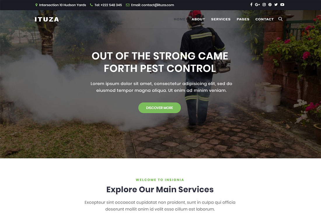 Ituza Pest Control WordPress Theme