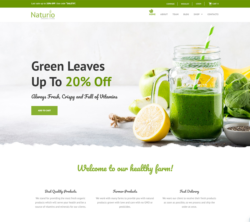 Naturio Food Store Template WooCommerce Theme