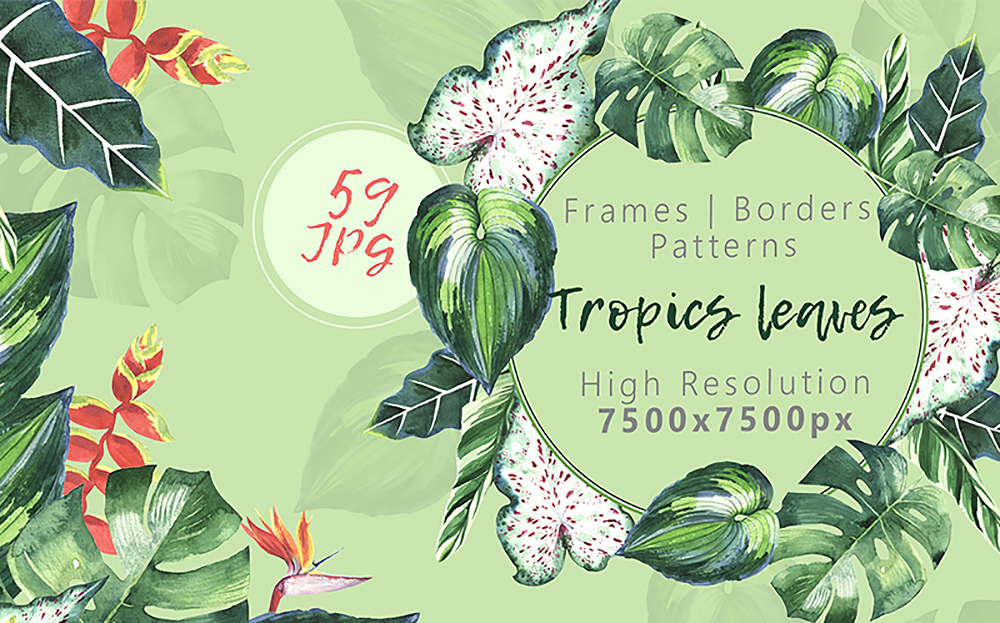Tropics Leaves JPG Watercolor Set Bundle