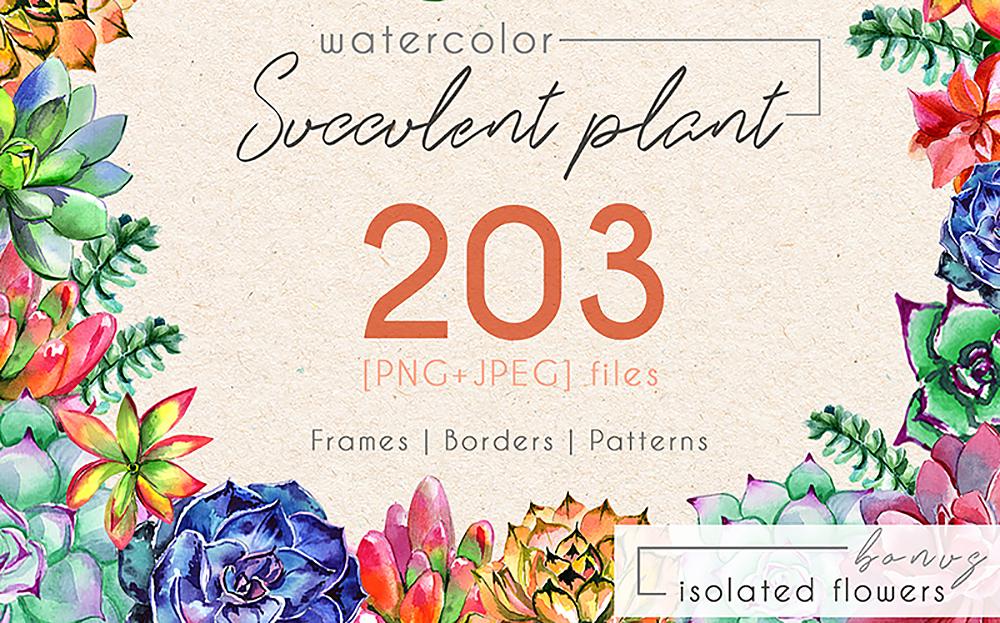 Succulent Plant - PNG Watercolor Set Bundle
