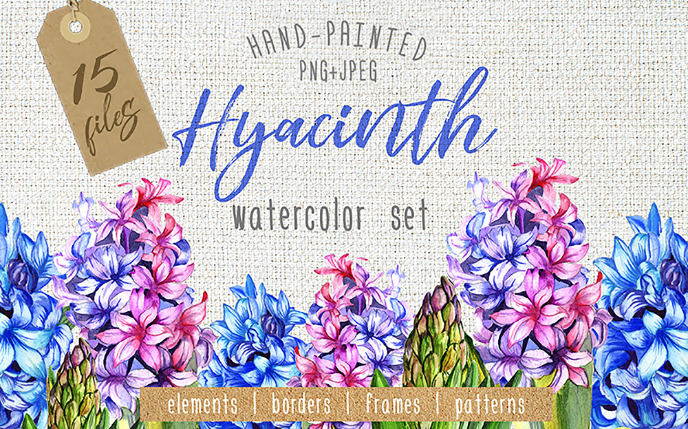 Colorful Hyacinth - PNG Watercolor Bundle