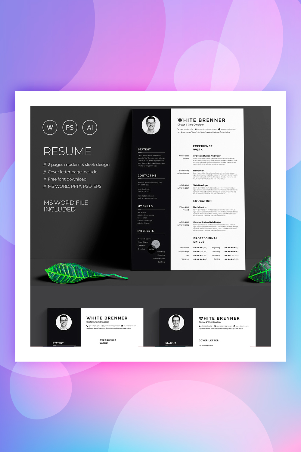 19 Best Resume Templates For Your Professional Resume - Colorlib