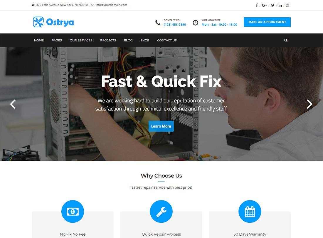 Ostrya Computer Repair WordPress Themes