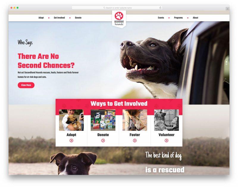 19 Best Veterinary Websites For Veterinarians 2019
