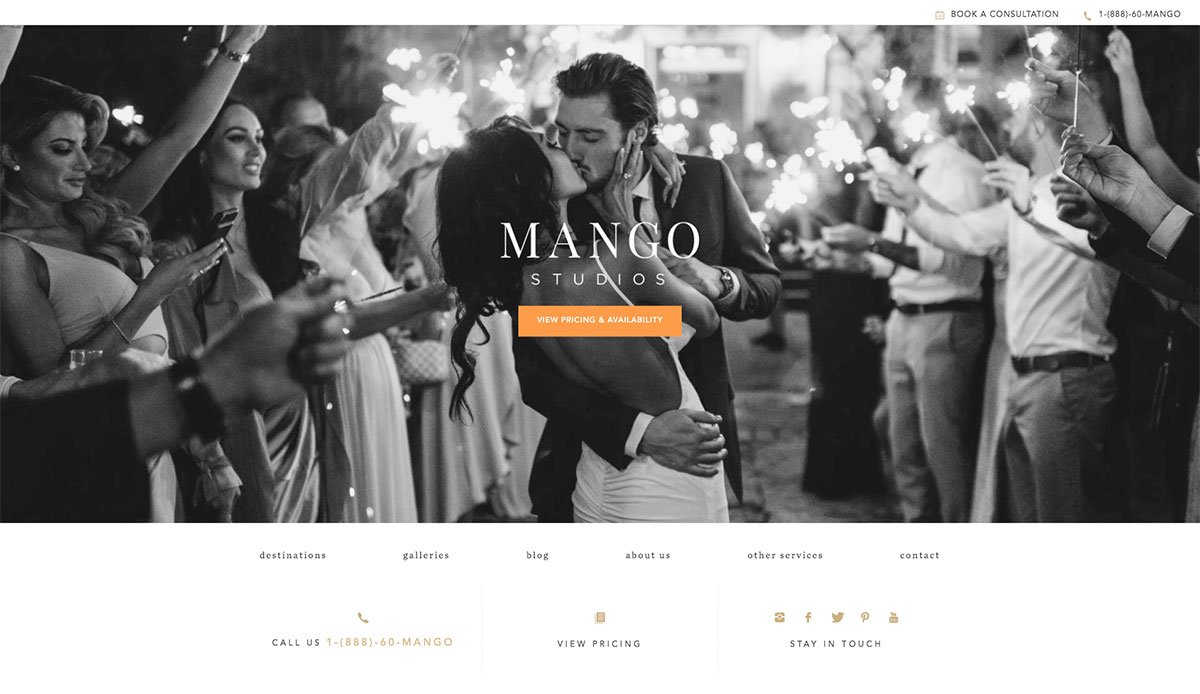 19 Excellent Wedding Photography Websites To Look Into 2020 Colorlib