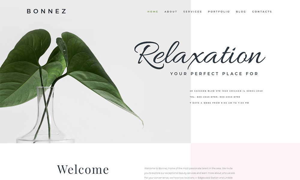 Bonnez - Massage Salon Ready-to-Use Minimal Elementor WordPress Theme