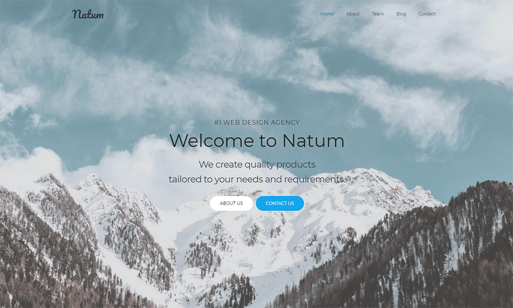 Natum - Web Design Multipurpose Modern Elementor WordPress Theme
