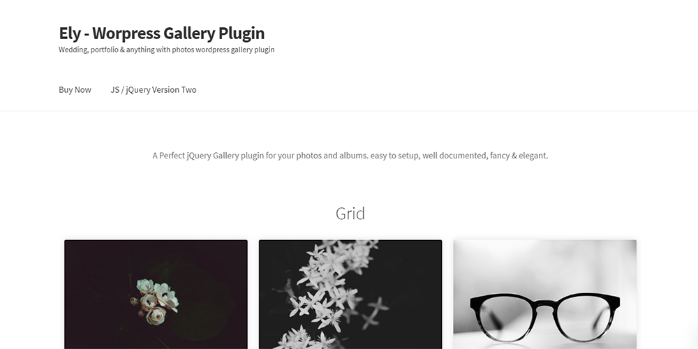 Ely - Gutenberg Gallery Block WordPress Plugin