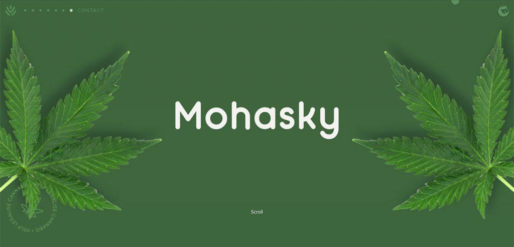 Mohasky