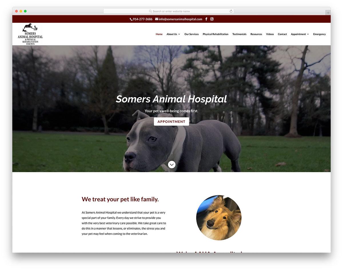 Somers Animal Hospital