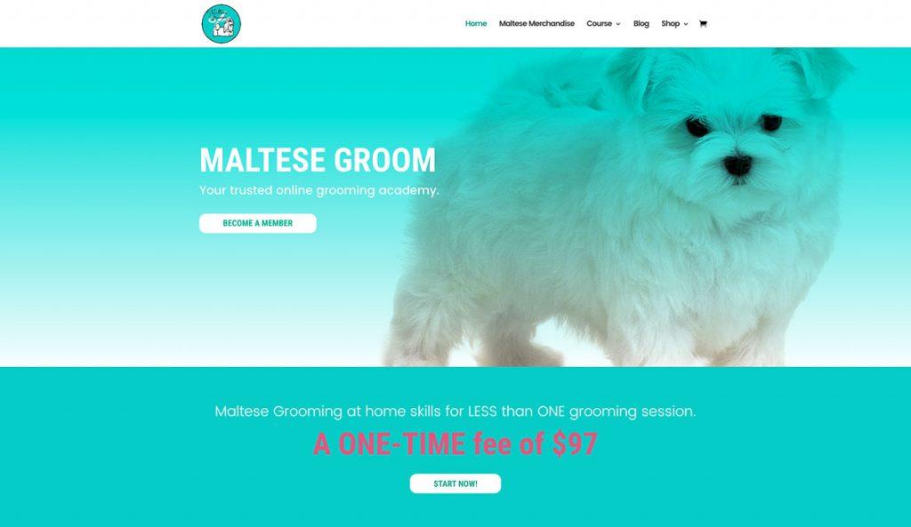 Maltese Groom