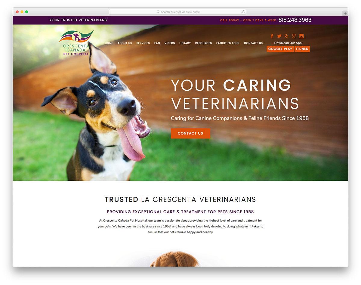 Cresenta Canada Pet Hospital