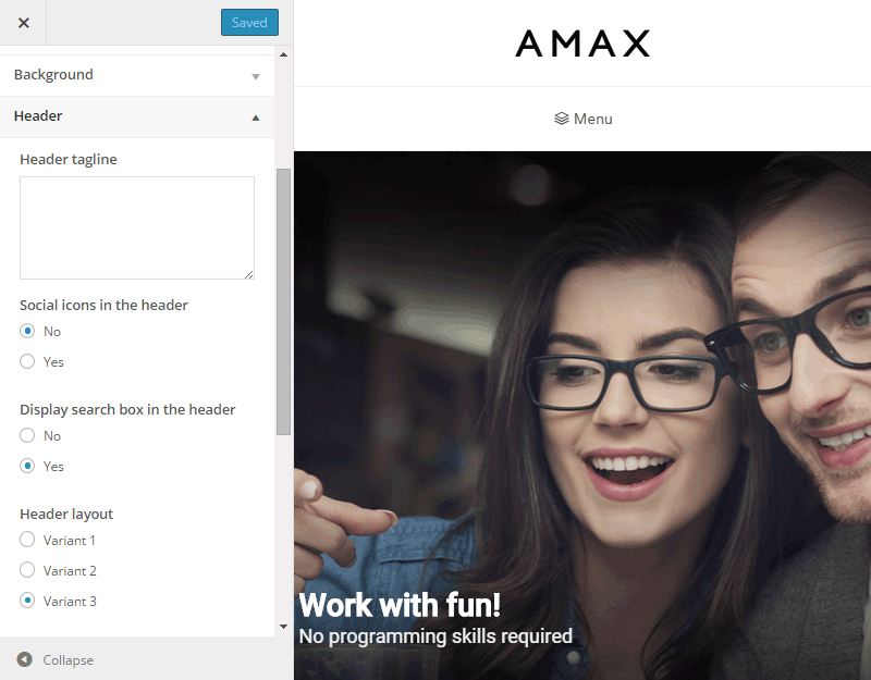 AMAX WordPress Customizer
