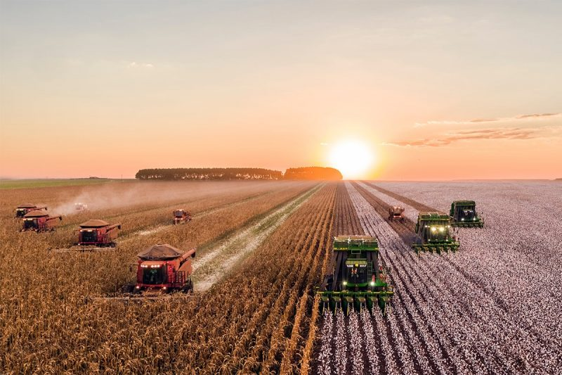 The Most Fruitful Agriculture WordPress Themes To Start Your Own Farm Website