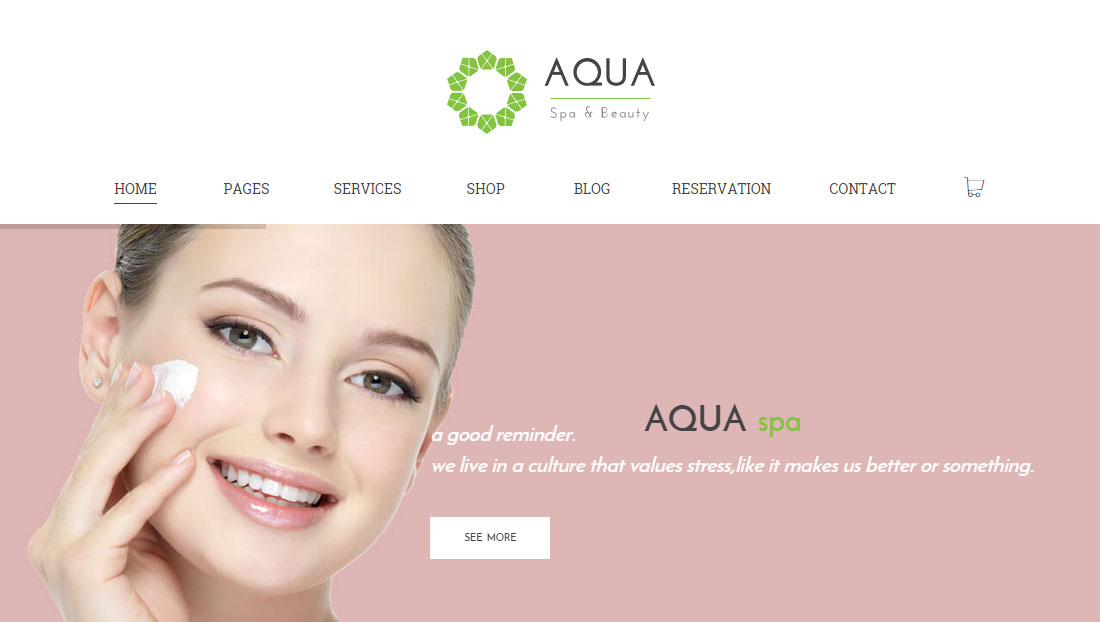 Aqua Spa And Beauty WooCommerce WordPress Theme Review