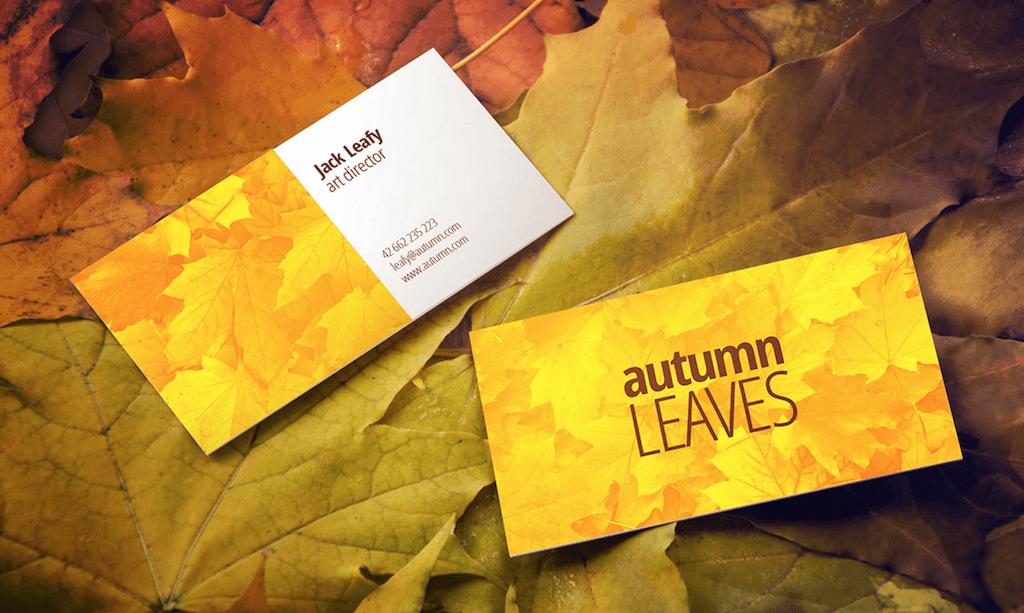 Autumn Leaves by Łukasz Pomotowski
