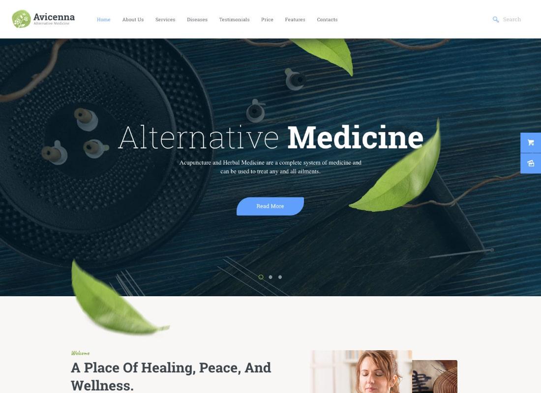 , Top 10 Alternative Medicine WordPress Themes 2020, Rojak WP