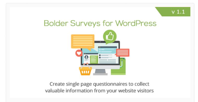 Bolder Surveys