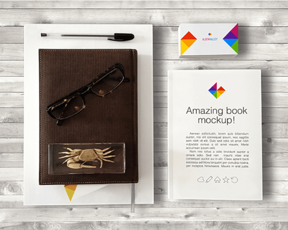 Book and Business Card Mockup by AlienValley