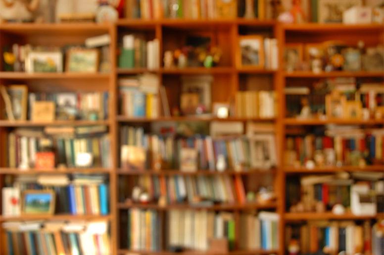 Book Store WordPress Themes