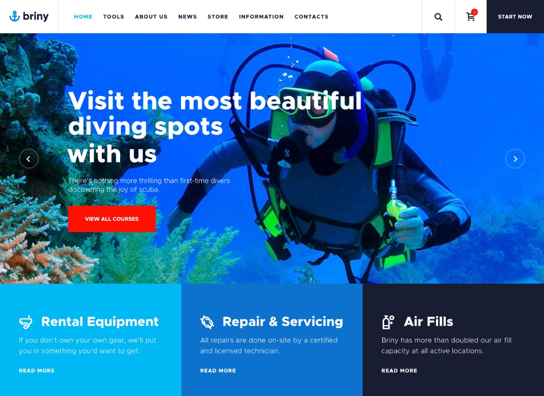Briny | Scuba Diving School & Water Sports WordPress Theme